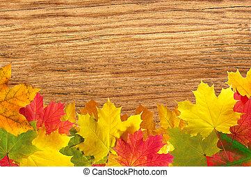 färgrik, höst lönn lämnar, över, ved struktur, närbild, bakgrund