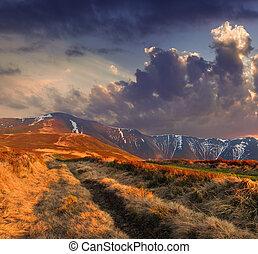 färgrik, höst landskap, in, den, fjäll., soluppgång