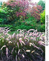 färgrik, trädgård, med, smyckad gräs