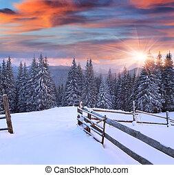 färgrik, vinter, soluppgång, i fjällen
