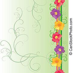 färgrika blomstrar, gräns, på, grön fond, fjäder, natur, vektor