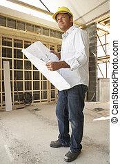 färsk, arkitekt, Planer, Hem
