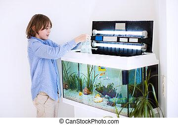färsk, fish, sätta, akvarium, barn