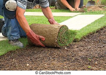 färsk, gräsmatta, läggning torvtäck