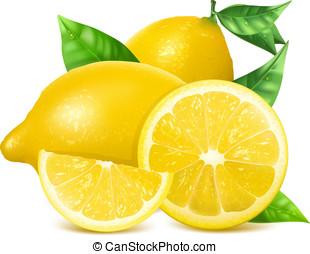 färska citroner, med, leaves.