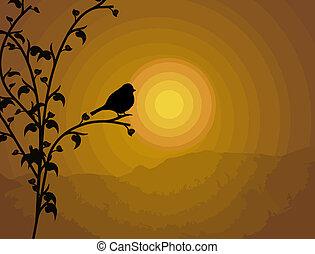 fågel, på, filial