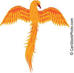 fågel, phoenix, isolerat
