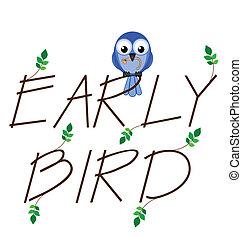 fågel, tidigt