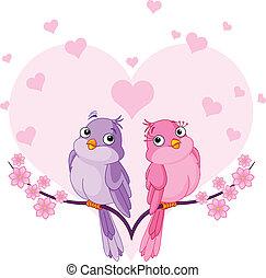 fåglar, i kärlek