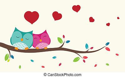 fåglar, kärlek, par