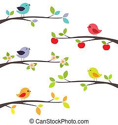 fåglar, på, grenverk
