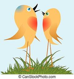 fåglar, sjunga, a, fjäder, song.