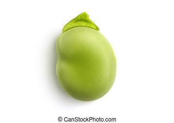 fève, vert