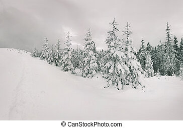 fée-contes, forest., hiver, chute neige