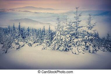 fée-contes, montagnes., hiver, chute neige