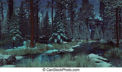 fée, mystique, forêt, 4k, hiver, luciole, lumières