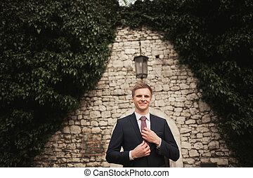 fényűzés, lovász, készülődik, helyett, esküvő, dísztér