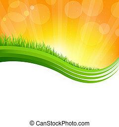 fényes, háttér, noha, zöld fű