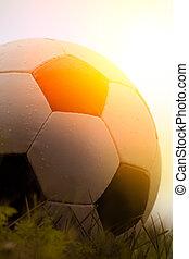fénykép, focilabda, fű