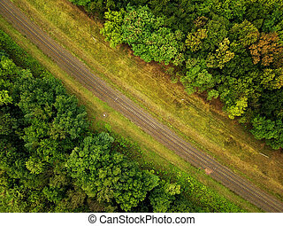 fénykép, vasút, körülvett, antenna, erdő
