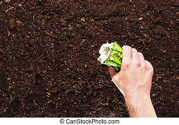 fértil, jardim, solo, topo, textura, fundo, vista