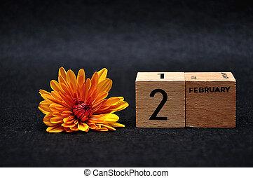 février, blocs, bois, 2, arrière-plan noir, pâquerette, orange