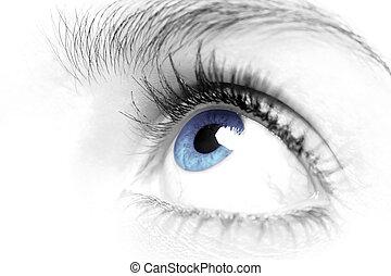 fêmeas, olho azul, cima