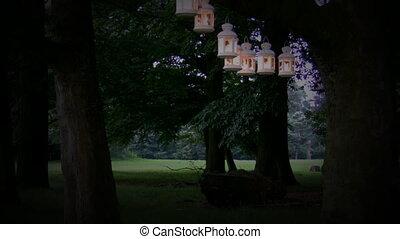 fête, parc, lumières