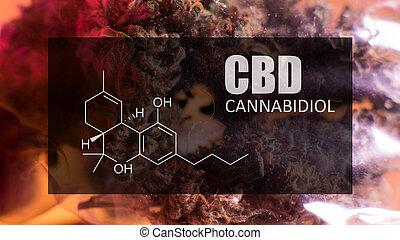 fórmula, cannabidiol, primer plano, (cbd)., químico