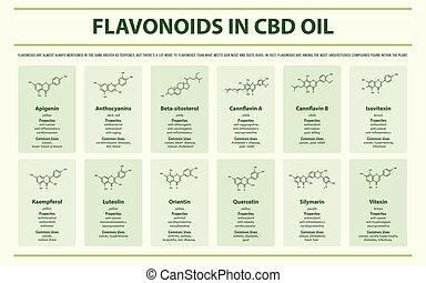 fórmulas, óleo, infographic, horizontais, cbd, flavonoid, estrutural