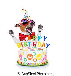 Födelsedag, sjungande, hund, lycklig