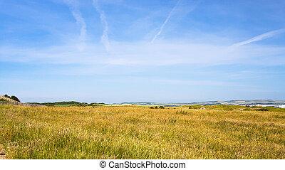 föld, képben látható, sapka, gris-nez, alatt, franciaország