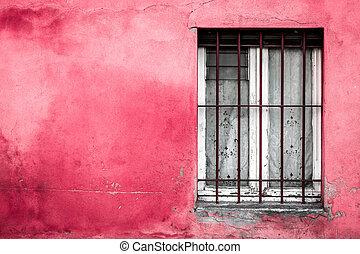 Rosa, utomhus, vägg, fönster, bakgrund, termometer.