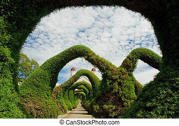 förbluffande, trädgårdar