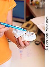 förklarande, dental, klinik, kast, tandläkare, kvinnlig
