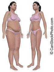 förlust, vikt, meta, efter, främre del, för, synhåll