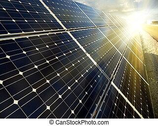 förnybart, sol makt, användande, energi, växt