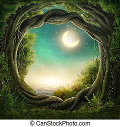 förtrollat, mörk, skog