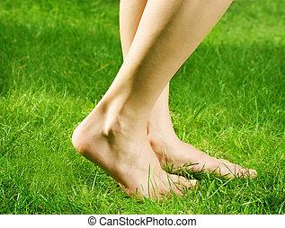 fötter, bar, kvinna, grönt gräs