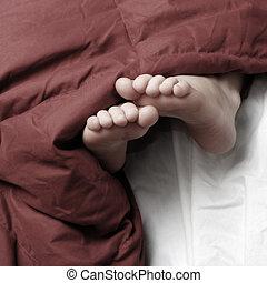 fötter, filt, röd, säng, sova