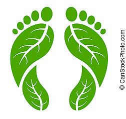 fötter, grön