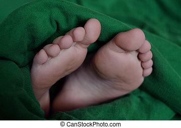 fötter, svept, filt, varm
