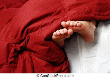 føder, seng