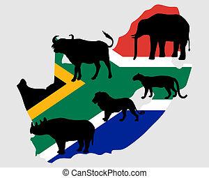 fünf, groß, afrikas, süden