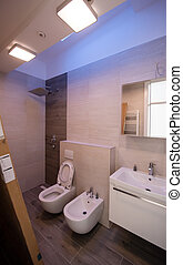 fürdőszoba, elegáns, befejezetlen, belső