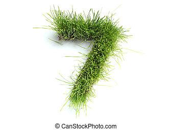 fű, elkészített, -, számok, 7