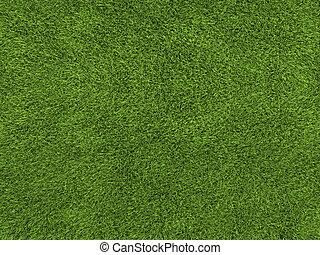 fű, struktúra