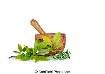 fűszernövény, zöld, rozmaring, öböl