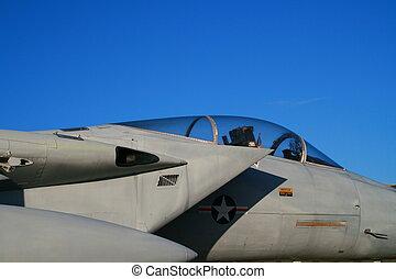 f-15 adelaar, vechter