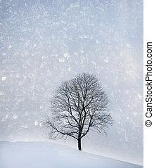 fa, alatt, tél